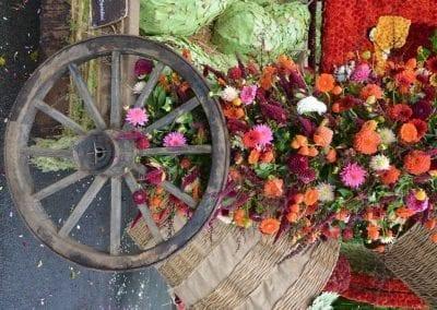 bloemencorso-eelde-2016-007