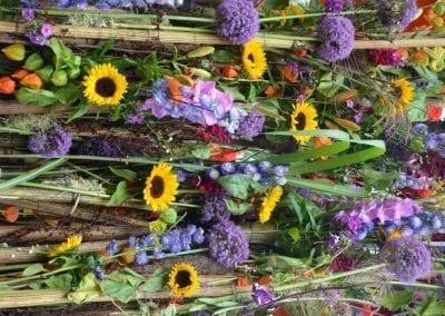 bloemencorso-eelde-2016-008