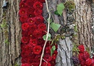 bloemencorso-eelde-2016-011