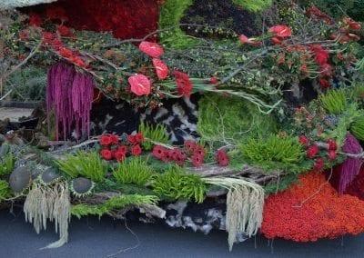 bloemencorso-eelde-2016-096
